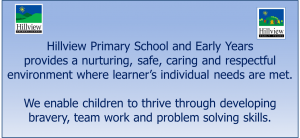 Hillview Primary Vision 2016_17