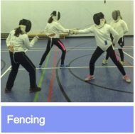 Fencing link