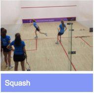 Squash link