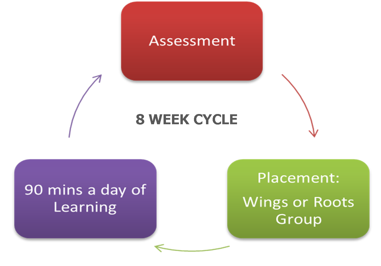 SFA Cycle