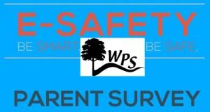 Online Safety Survey WPS