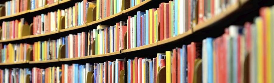 rounded_library_shelves_books_istock_000032976972_900x450