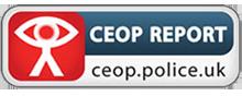 ceop-Report